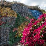 A la découverte de Viñales: 5 belles expériences à vivre